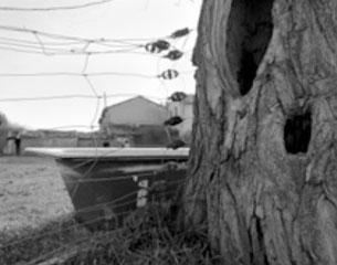 Exposición: Proyecto límite – Roberto Díaz