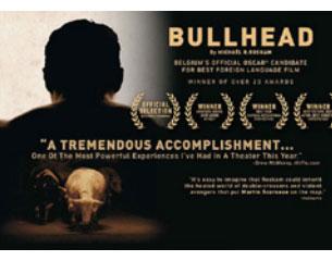 Cine: BULLHEAD