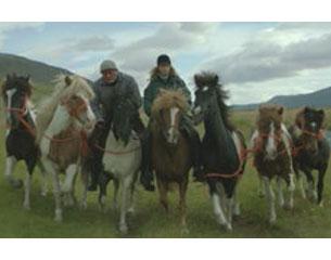 Cine: De caballos y hombre