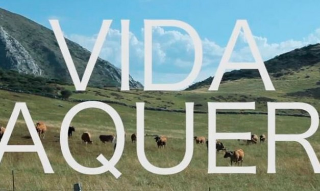 Cine. Vida vaquera